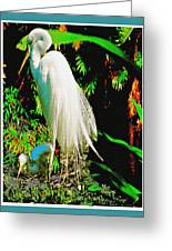 Egret3 Greeting Card