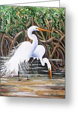 Egrets And Mangroves Greeting Card
