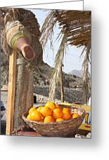 Egypt Oranges At The Oasis Greeting Card