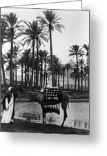 Egypt: Village Greeting Card