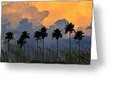 Eight Palms Greeting Card