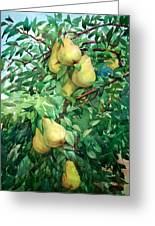Eight Pears Greeting Card by Peter Sit