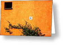 Eighteen On Orange Wall Greeting Card