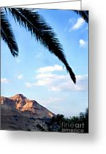Ein Gedi Oasis In The Judean Desert Greeting Card