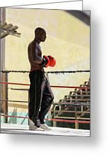 El Boxeador Greeting Card by Dawn Currie