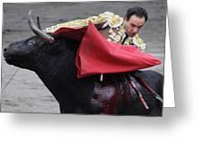 El Cid Greeting Card
