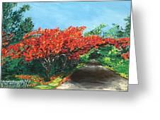 El Flamboyan En Mi Camino Greeting Card