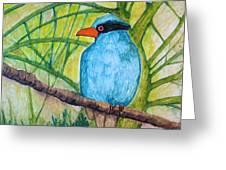 El Pajaro Del Agua Azul  Greeting Card