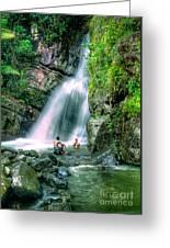 El Yunque Rain Forest Waterfall Greeting Card