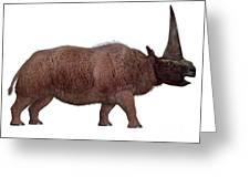 Elasmotherium Side Profile Greeting Card
