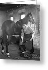 Elderly Blacksmith Shoeing Horse Greeting Card