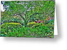 Elderly Man At St. Luke's Garden Greeting Card