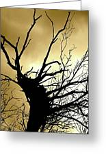 Electric Tree Black And Gold Greeting Card