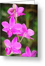 Elegance In Nature Greeting Card