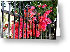 Elegant Fence Greeting Card