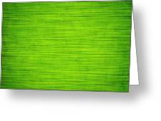 Elegant Green Abstract Background Greeting Card