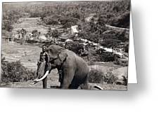 Elephant And Keeper, 1902 Greeting Card