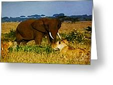 Elephant And The Lions Greeting Card
