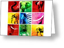 Elephant Animal Decorative Colorful Multiptych 1 - By  Diana Van  Greeting Card