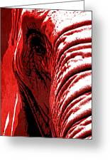 Elephant Animal Decorative Red Wall Poster 14 - By  Diana Van Greeting Card