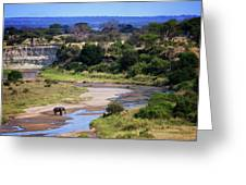 Elephant Crossing In Tarangire Greeting Card