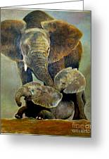 Elephant Familly Greeting Card