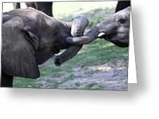 Elephant Greeting IIi Greeting Card