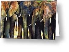 Elephant Herd Greeting Card