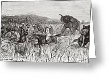 Elephant Hunters In The 19th Century Greeting Card