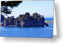 Elephant Island Kachemak Bay Greeting Card