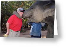 Elephant Kissing Man Holding Bananas Greeting Card