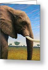 Elephant On Safari Greeting Card