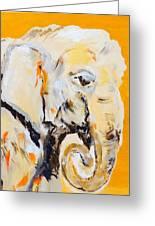 Elephant Orange Greeting Card