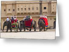 Elephant Ride 2 Greeting Card