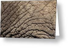 Elephant Skin Background Greeting Card