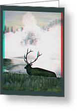 Elk - Use Red-cyan 3d Glasses Greeting Card