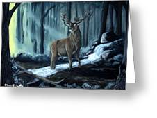 Elk In The Morning Greeting Card
