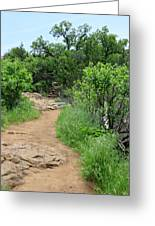 Elk Mountain Trail Greeting Card