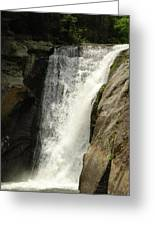 Elk River 2 Greeting Card