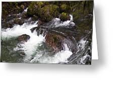 Elkhorn Creek 2 Greeting Card