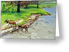 Elks Crossing Greeting Card