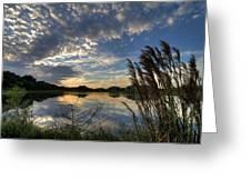 Ellenton Lake Sunset 05 Greeting Card