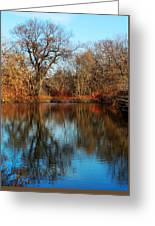 Elm By The Connecticut River In Autumn Greeting Card