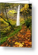 Elowah Autumn Trail Greeting Card
