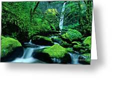 Elowah Falls 3 Columbia River Gorge National Scenic Area Oregon Greeting Card