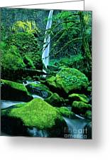 Elowah Falls 4 Columbia River Gorge National Scenic Area Oregon Greeting Card
