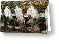 Elsinore Fence Greeting Card