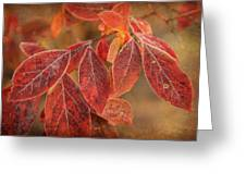 Embers Of Autumn Greeting Card