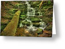 Emerald Dreams Greeting Card