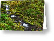 Emerald Falls And Creek In Autumn  Greeting Card